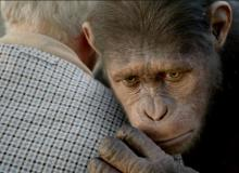 La Planète des singes : les origines - Andy Serkis - cinema reunion 974