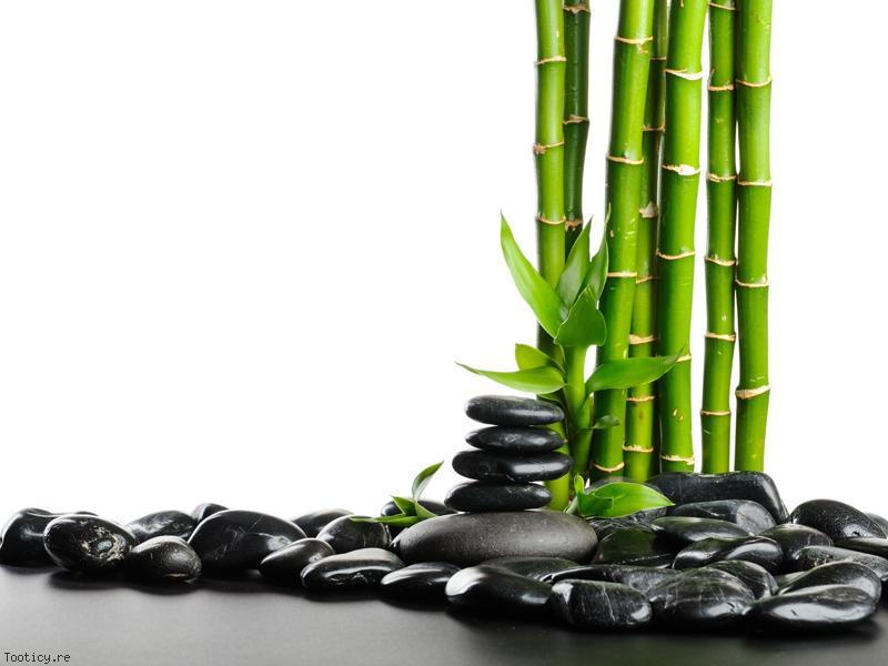Les accessoires d 39 une d coration zen d co magazine for Deco jardin zen pas cher